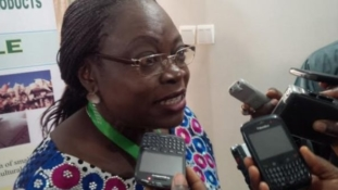 Why Europe rejects Nigerian food – NAFDAC