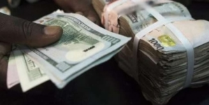 FOREX: CBN injects $246.2m for wholesale, SMEs, invisibles