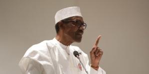 Buhari will win Presidential election, again- Presidency