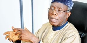 Nigeria to ban importation of tomato past in 2019- Audu Ogbe