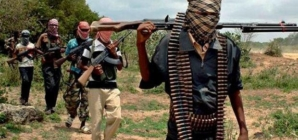 Seven killied as Boko Haram attack Adamawa community