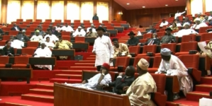 Senate orders arrest of CEOs of Glo, Crown Flour Mills, 28 others