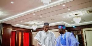 Tinubu in Aso Rock, refuses to discuss Buhari's reelection in 2019