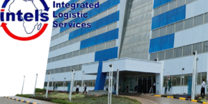 Revoking residence permits of Intels' expatriates not political – FG
