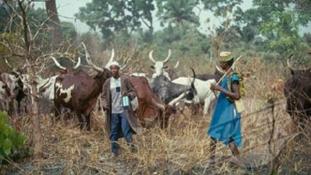 ( UPDATED) Suspected Fulani herdsmen kill two village heads in Adamawa