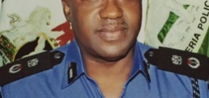 High profile criminals have no hiding place in Imo -CP