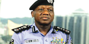 Police not involved in NASS invasion – IGP Idris