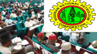 Reps to investigate NNPC's financial records
