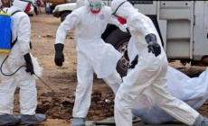 WHO suspends work on Ebola in Congo amid militant attacks
