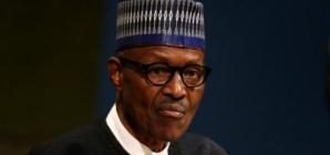Education is an antidote to terrorism – Buhari