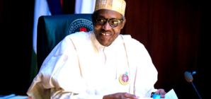 2019 Presidency: Obasanjo's son joins Buhari Campaign Organisation