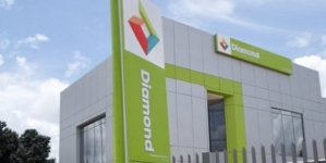 BREAKING: NSE suspends trading in Diamond Bank shares