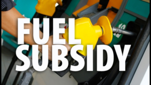 FG budgets $1bn for fuel subsidy in 2019 budget