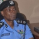 Ballot box snatchers will have themselves to blame – IGP