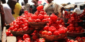 Inflation hits seven-month high at 11.44%