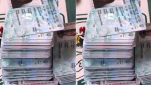 Election: NDLEA arrests man with 244 PVCs in Akwa Ibom