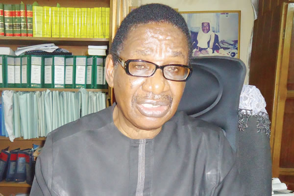 INEC chairman a 'very weak man, lacks initiative' – Sagay