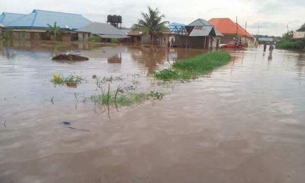 Flood Victims: NEMA collates data on farmers in Anambra