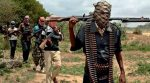 Three soldiers killed as troops foil Boko Haram attack on Borno village