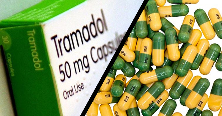 Police intercept 303 cartons of Tramadol in Kano, arrest five