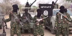 Boko Haram kills aid worker in Bornu, abduct others