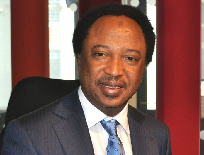 Why North shouldn't think of producing Buhari's successor – Shehu Sani
