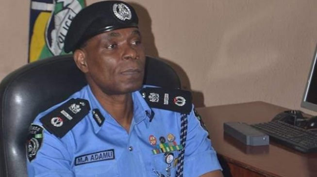How 17 vigilantes were killed by armed bandits in Kaduna village – Police
