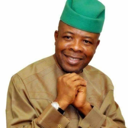 Ihedioha's victory has ended tyranny in Imo – Former SSG