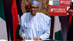 Merit should guide Buhari's appointments into next FEC – APC chieftain
