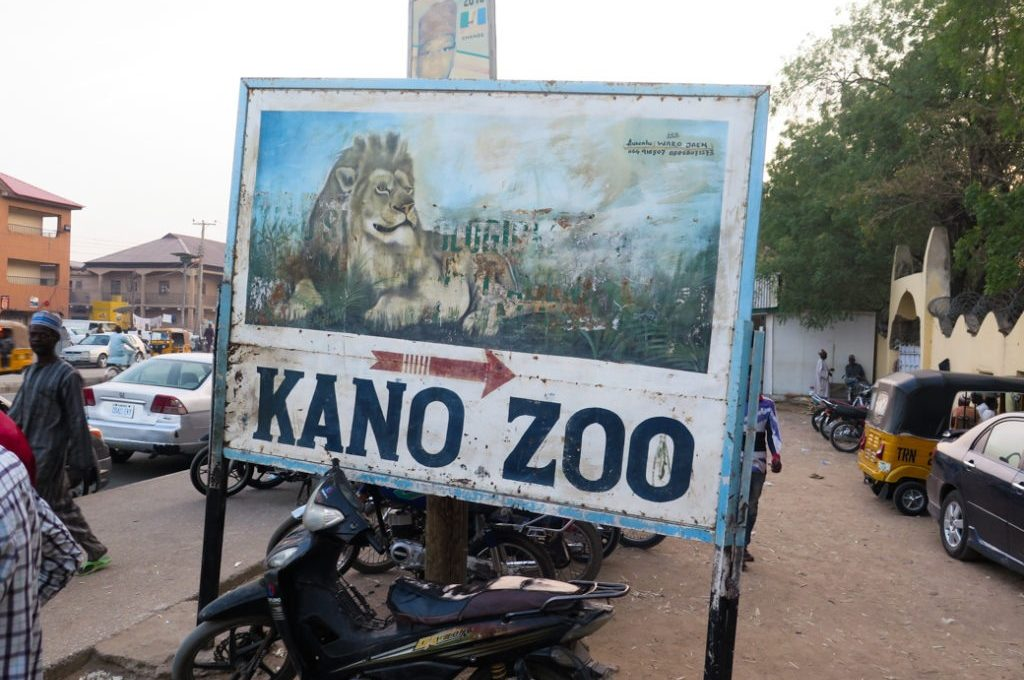 Kano zoo mgt: Money stolen by burglars not gorilla