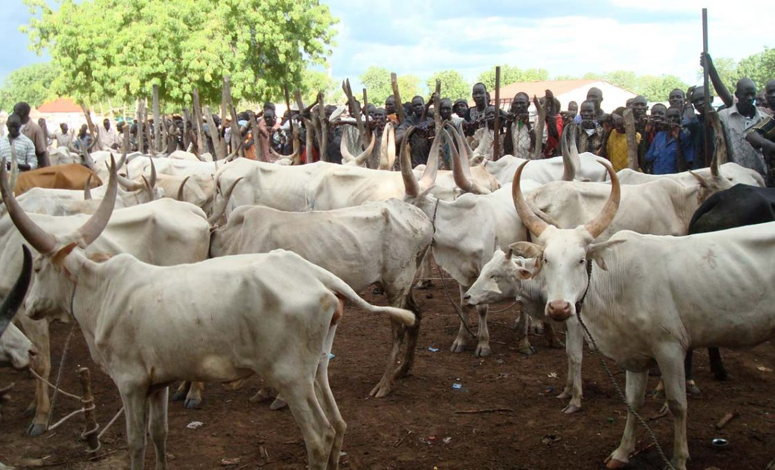 RUGA: Muslim group denies alleged Fulani plan to install Emirs in Enugu, Asaba, Osogbo, others
