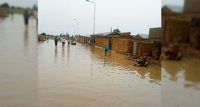 Jigawa flood displaces hundreds of families