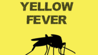 Don't panic over yellow fever outbreak, Ebonyi govt. tells resident