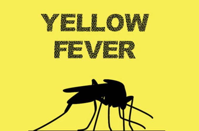 Don't panic over yellow fever outbreak, Ebonyi govt. tells resident