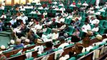 Reps vote in favour of immunity for presiding officers